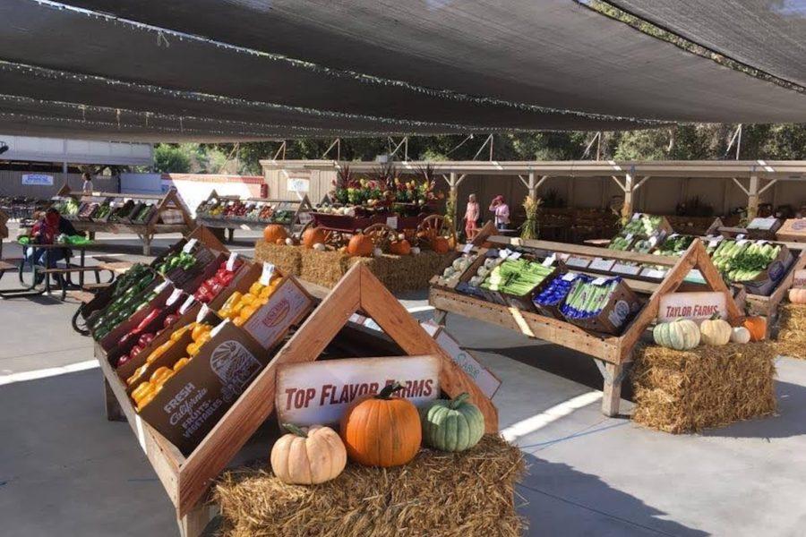 Bolado Park - Produce Market